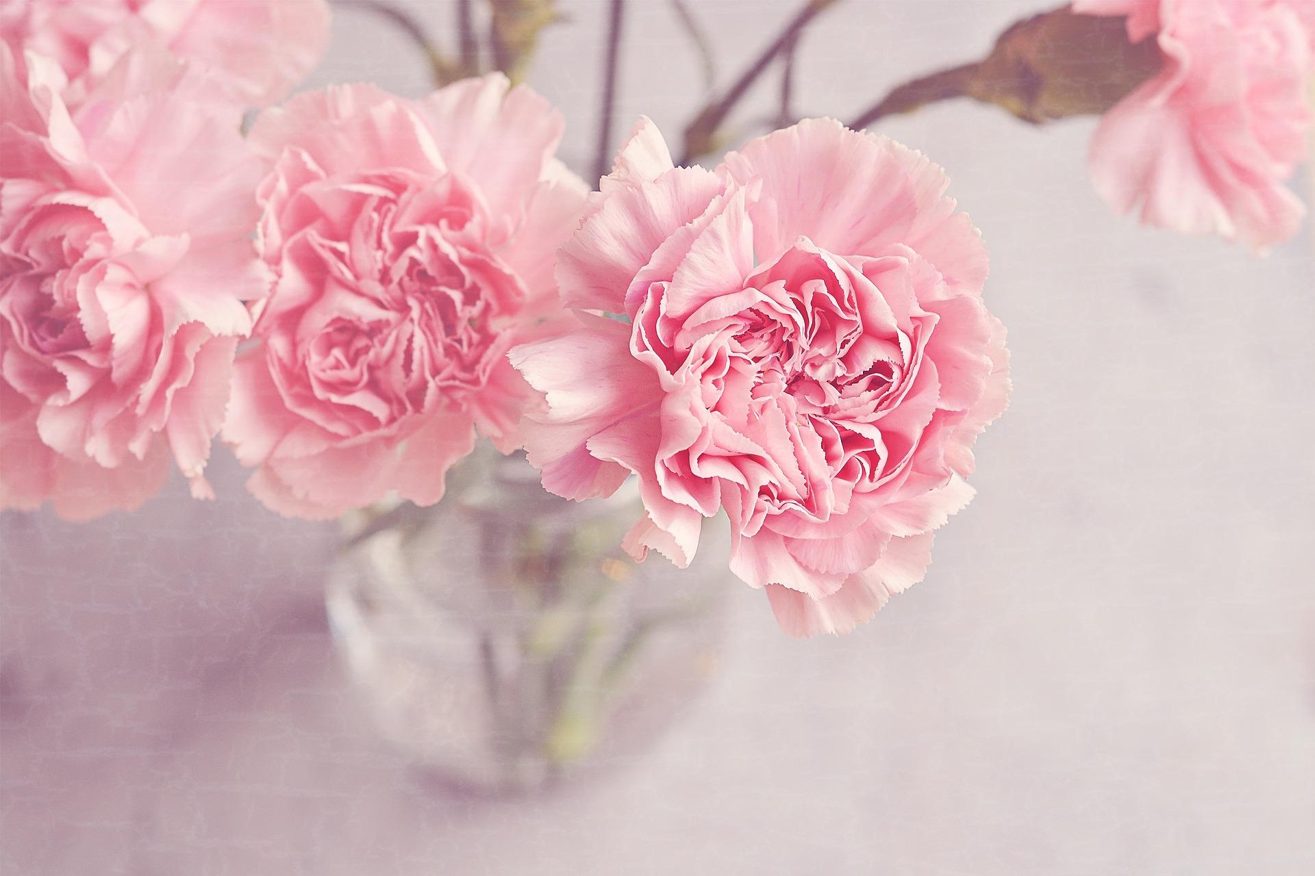 flowers-1313827_1920